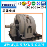 T Series Three Phase Synchronous Motor 600kw