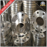 Hot Sale Quality Stainless Steel Forged Weld Neck Flanges (YZF-E300)