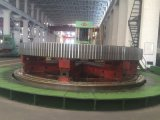 Girth Gear/Pinion for Rotary Kiln/Mill of Mine Industry/Cement Plant