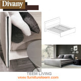 Teem Living New Design Modern Leather Bed