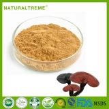 Chinese Herb Ganoderma Lucidum Extract Powder