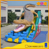 Commercial Used Giant Inflatable Slide for Promotion (AQ1141)