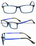 High Quality Fashionable Custom Logo Tr90 Eyewear Frames