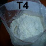 High Purity Anabolic Steroid Powder Fat Burner T4 Levothyroxine Sodium