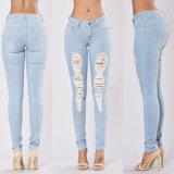 Damaged Women Jeans