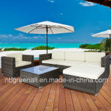 Outdoor/Indoor/Garden/Rattan Furniture Poly Rattan Sofa Set