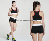 Fashion Quickly Dry Comfortable Gym Bra Yoga Shorts Fitness Suit