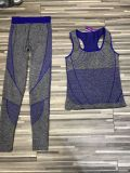 Wholesale High Quality of Women′s Sportwear Fitness Sets Yoga Sets