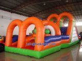 Amusement Inflatable Obstacle for Kids (A515)
