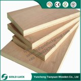 (BB/BB Grade) Bingtangor, Pencil Ceder, Okoume Face Commercial Plywood