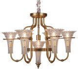 Iron Chandelier Lighting, Metal Body, Glass Fabric, 6 Lights (SL2238-6+1)