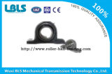 Ucp004 Pillow Block Bearing, Bearing with Housing