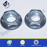 Carbon Steel Galvanized Hex Flange Nut