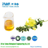 ISO Approved 100% Natural Evening Primrose Oil Fatory Price CAS No. 90028-66-3