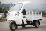 2016 ABS Cabin 150cc Air Cooled Cargo Tricycle