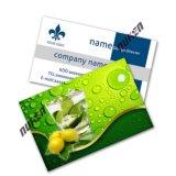 Pet Animated 3D Lenticular Business Card