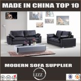 Modern Fashion Germany Living Room Leather Sofa