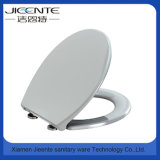 Quick Release Soft Close Plastic Toilet Seat