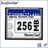 100X Compact Flash 256MB CF Memory Card (256MB CF)