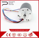 Controller DC Electric Pm Brushless Motor with Adjust Speed