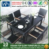 Rattan Table and Chair Set/Outdoor Dining Table Set (TG-1035)