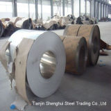 Premium Quality Stainless Steel Coil (AISI317)