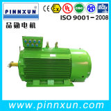380V 315kw Threephase Elelctric AC Torque Motor