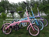 Folding Bicycle/Bike/Cycle for Sale (FD-020)