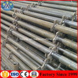 Hot Sale Hanging Scaffolding for Construction