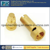 Custom Brass Casting and CNC Machining Service