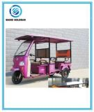 Eco-Friendly Solar Powered Electric Tricycle
