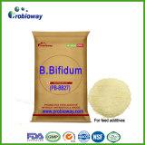 Bifidobacterium Bifidum Probiotics Animal Pet Feed Supplement