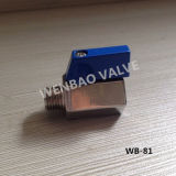 "1/4"" Butterfly Handle Ss316 Male X Female Mini Ball Valve"