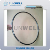 Asmeb16.20 Oval Ring Joint Gasket C/S