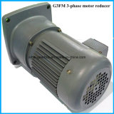G3 Series Helical Electric Foot Mounted Geared Motors