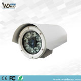 CCTV Explosion-Proof IR Bullet Marine Camera with 316 Stainless Steel