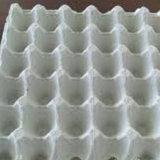 Te30 Egg Plastic Tray