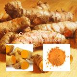 98% 95% Natural Pharmaceutical Grade Curcumin Extract Powder