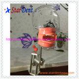 Good Quality Teaching System Phantom Head of Dental Equipment