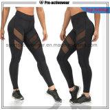 Free Sample Sports Wear Fitness Wear Fitness Yoga Pants