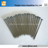 High Quality and Competitive Price Polished Common Nails