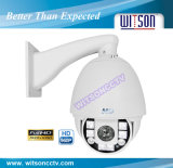 Witson Outdoor IP Dome Camera, High Speed IR Dome Camera (W3-SDN6800R)