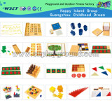 Educational Mathematical Toy for Sale (HC-242)