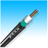 Gydxtw Outer Door Duct & Direct Burial Optical Fiber Cable