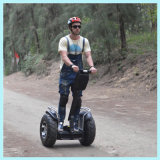 Two Wheel Smart Electric Chariot with Ce /FC /RoHS