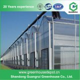 China Supplier PC Sun Board Small Conservatory Shed Greenhouse for Plants