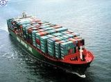 Consolidate Sea Freight From China to Singopare Each Big Port