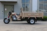 Famous 150cc 3 Wheel Cargo Tricycle for Shipment