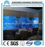 Large Wall Hanging Acrylic Aquarium