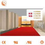 Non-Slip Mat Using in High-Grade Toilet Corridor